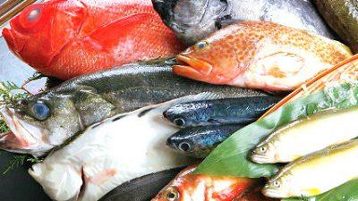 20170930鮮魚セット